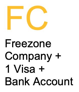 Freezonecompanysetupwith1visaandbankaccount